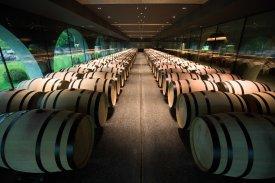 Kutjevo, 280628. Nova vinarija Galic u Kutjevu. Na fotografiji: vinarija Galic, dvorana s barrique bacvama. Foto: Vlado Kos / CROPIX -Nedjeljni-