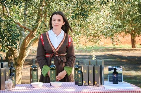 Berba maslina Novigrad 4