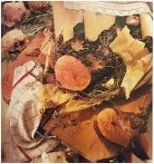 barolo-jelo 5