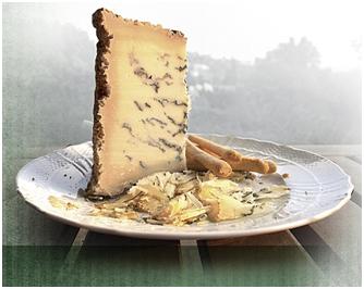 barolo-jelo 7